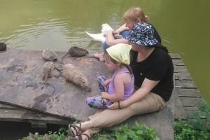 День приключений в Сочи для родителей с детьми