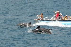 Обзорная экскурсия с морской прогулкой