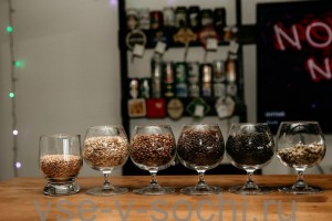 Мастер-класс по домашнему пивоварению